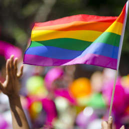The 2017 Honolulu Pride Parade & Festival