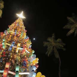 2017 Honolulu City Lights