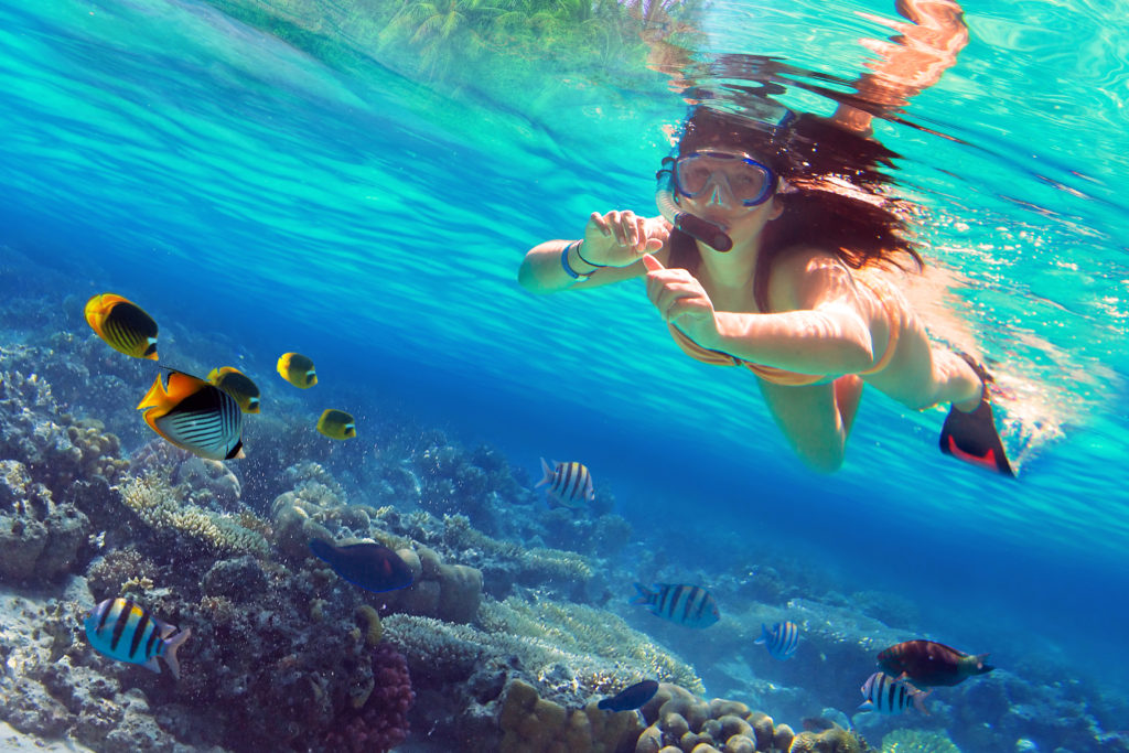 Swim beneath the blue water and discover a plethora of tropical fish