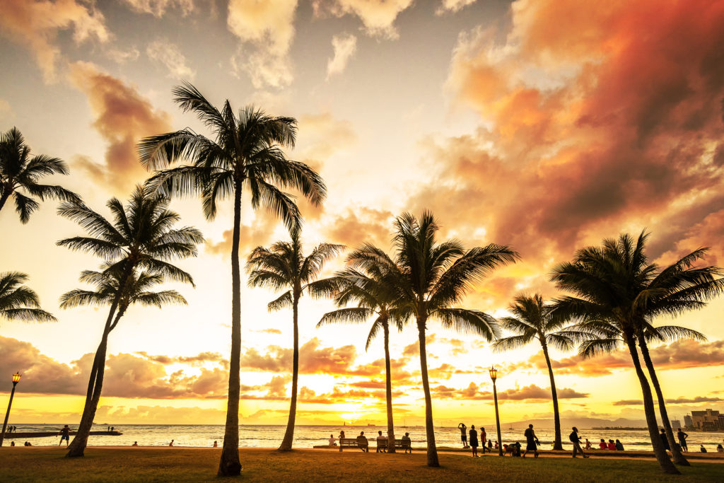 Depart from the beach at the heart of Waikiki.