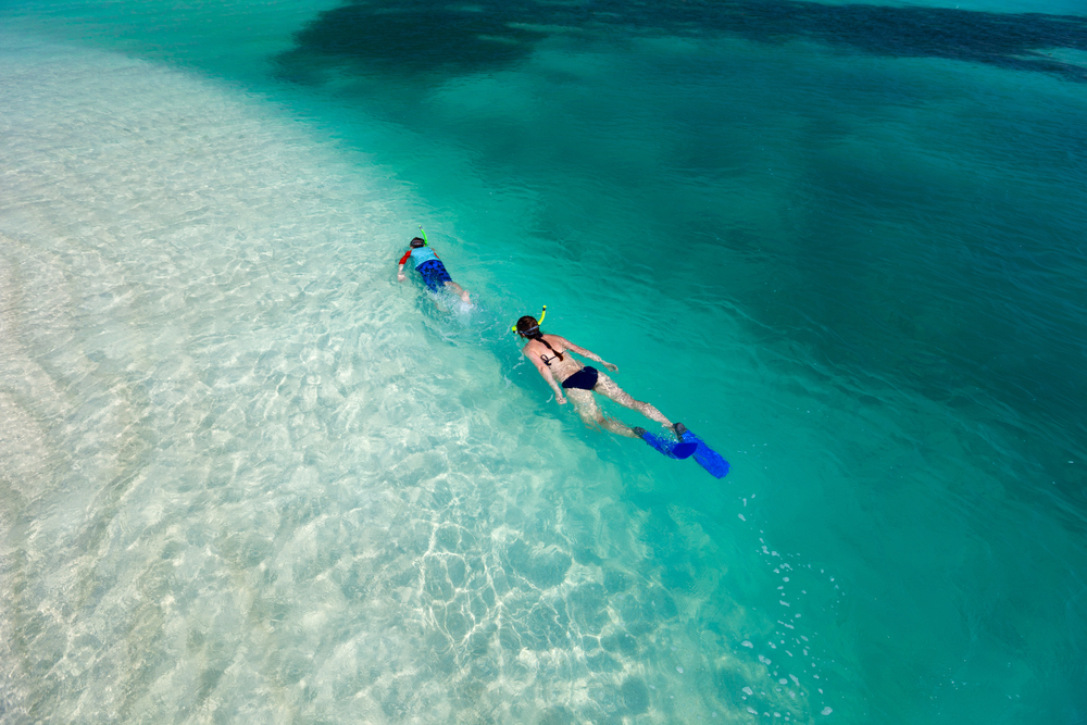 Enjoy prime snorkeling at the Kaneohe Sandbar